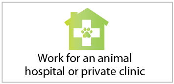 Work for an animal hospital or clinic